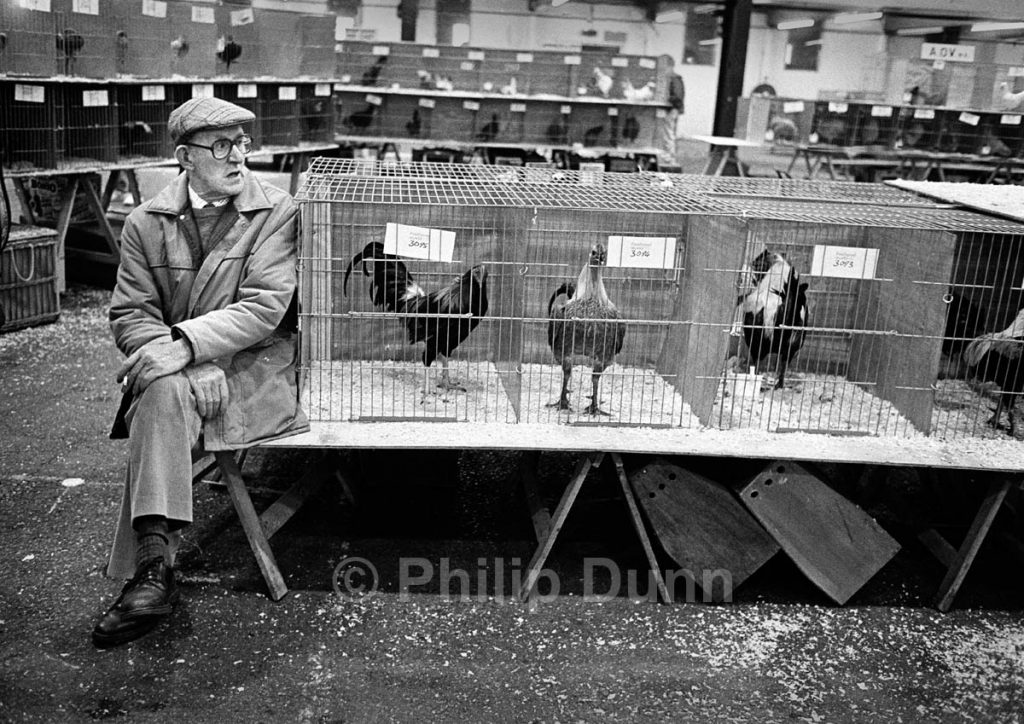 Man in cloth cap sits beside exhibits in poultry show - black and white image