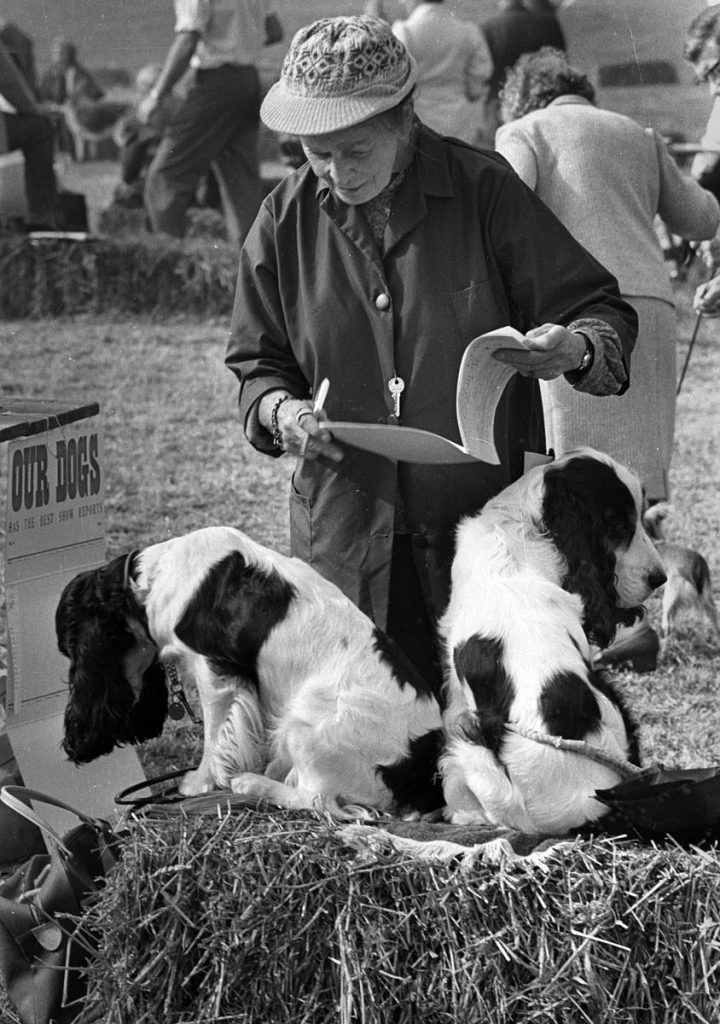 monochrome image of old lady at dog show in Herefordhire with her two spaniel dogs