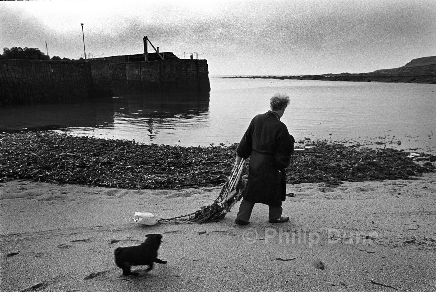 man in his dressing gown pulls debris from the beach in the harbour of Pitenweem, Scotland