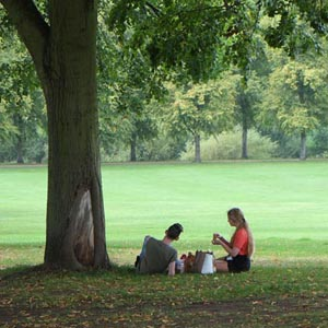 a young couple share a lunchtime picnic in the Quarry Shrewsbury