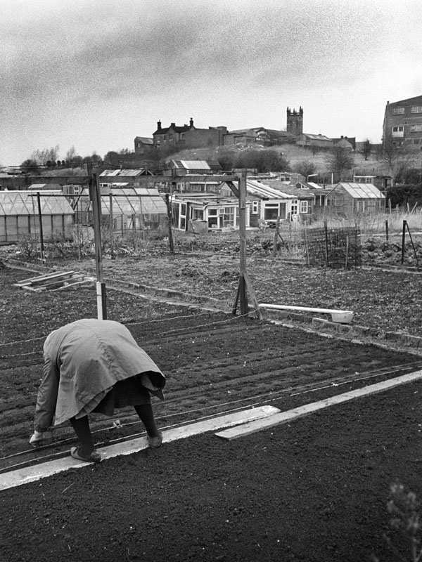 vintage black and white photograph of lady in her allotment