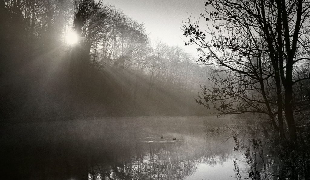 photographing in fog - crepuscular