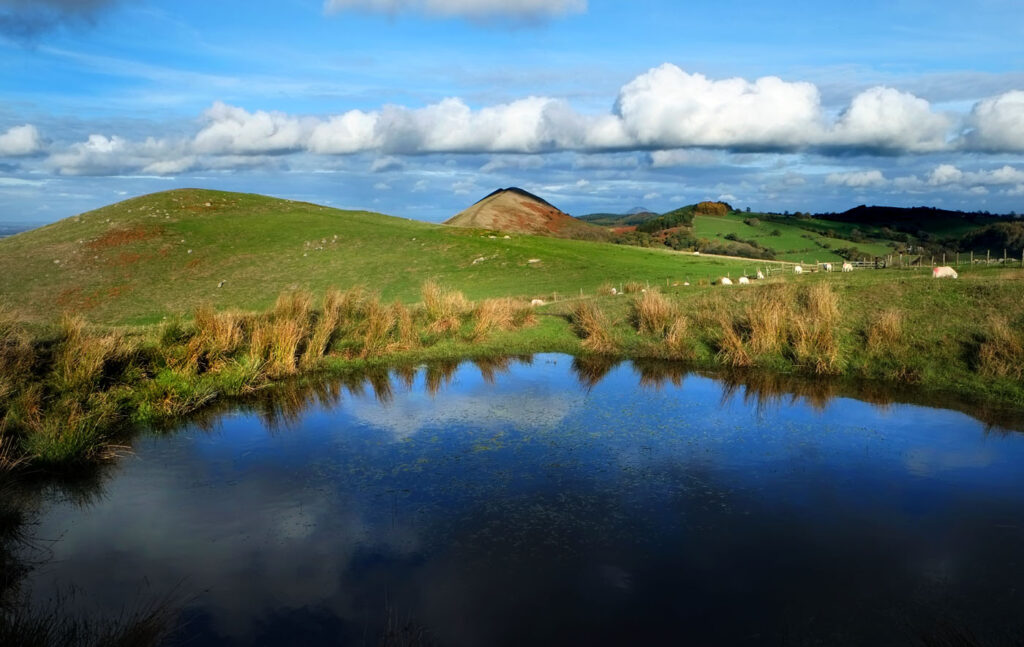 Reflections in lockdown landscape of Shropshire