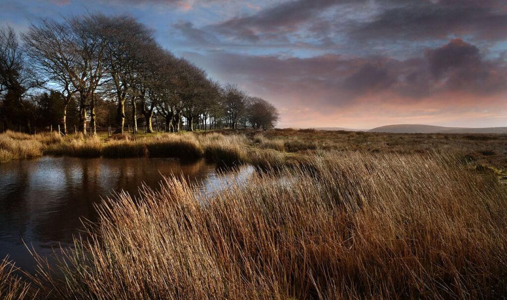 landscape Long Mynd Shropshire